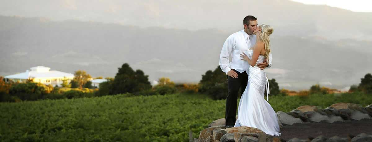 Wedding couple kiss overlooking David Arthur Vineyards in St. Helena, California