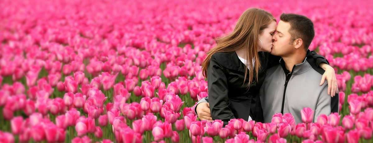 Kissing in the pink tulips